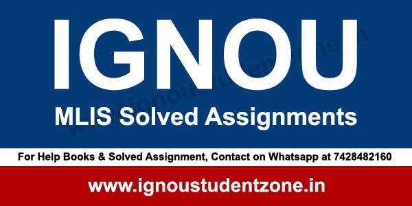 solve assignment online